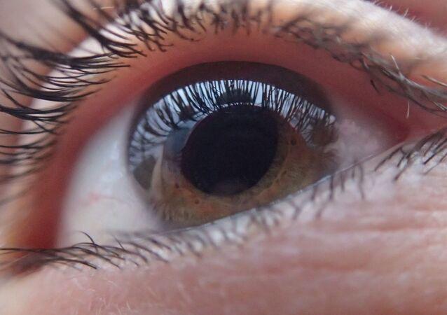 Retina humana (imagem referencial)
