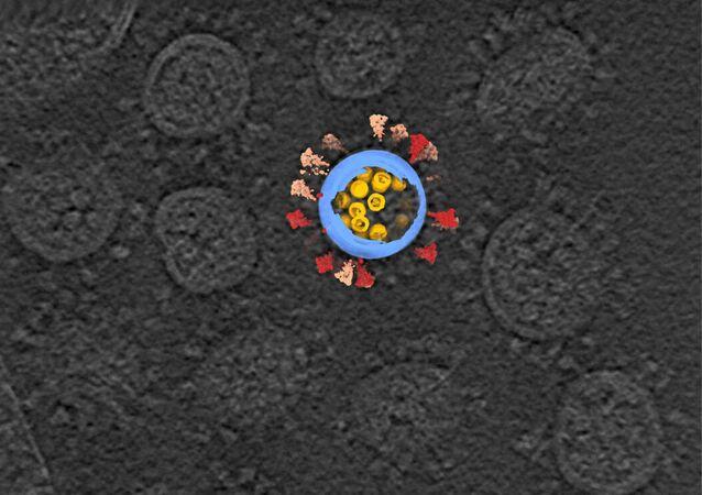 Imagem de uma criotomografia eletrônica SARS-CoV-2, em cinza, com uma representação artística de um vírus