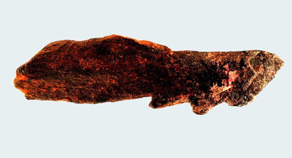Um grupo internacional de antropólogos identificou dentro de um conjunto de 52 peças pré-históricas escavadas há mais de 50 anos, mas pouco estudadas, uma ponta dentada fabricada em osso pelo extinto Homo erectus, há mais de 800 mil anos