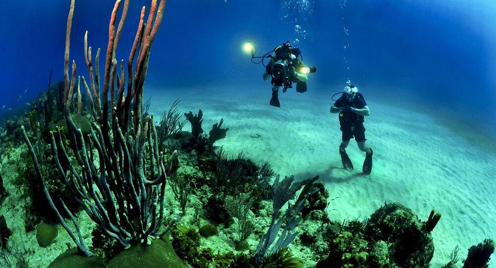 Mergulhadores explorando recife de coral (imagem referencial)