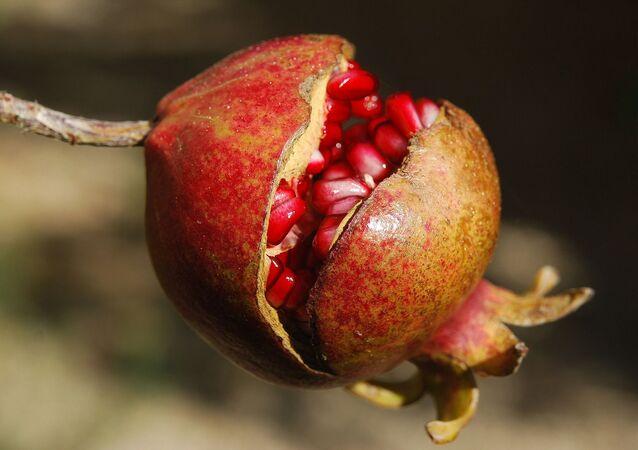 Romã - Pomegranate