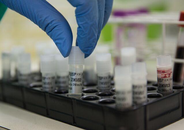 Pesquisador do ICB-USP manipula amostras de sangue contaminado pelo vírus da zika.