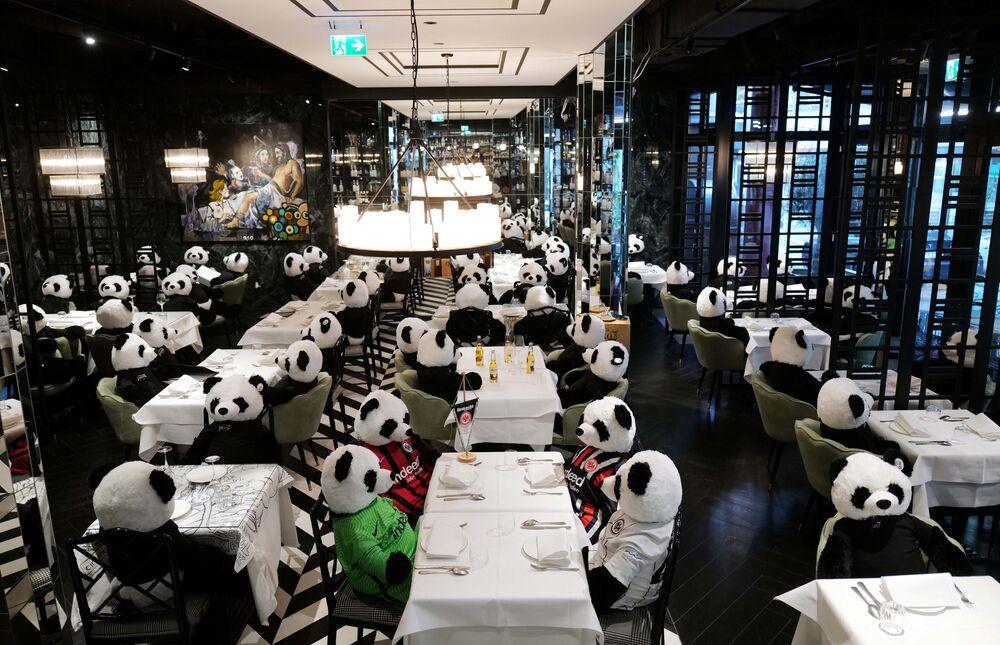 Pandas sentados à mesa em restaurante de Frankfurt para atrair atenção ao impacto das medidas de confinamento no setor da gastronomia