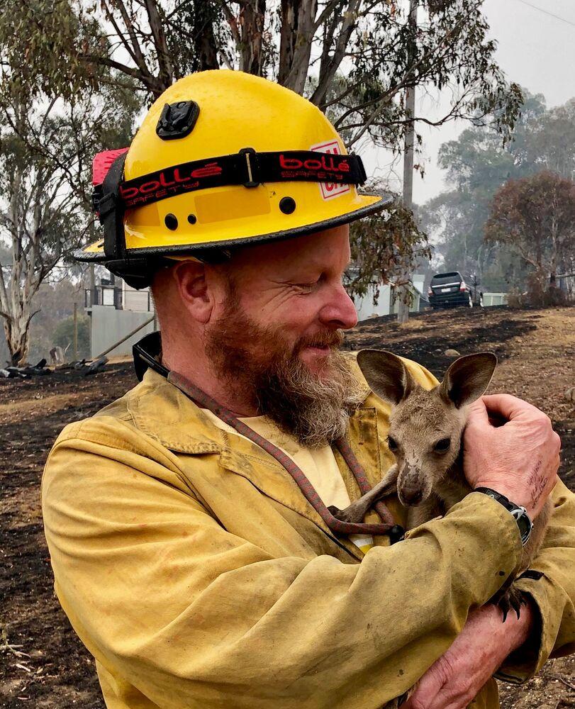 Filhote de canguru é resgatado em 5 de janeiro enquanto fortes incêndios florestais atingiam a Austrália