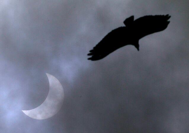 Eclipse solar visto em Porto Alegre, 14 de dezembro de 2020