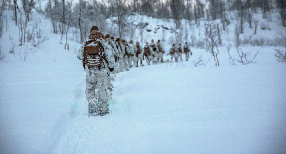 Fuzileiros navais dos EUA durante exercícios na Noruega (foto de arquivo)