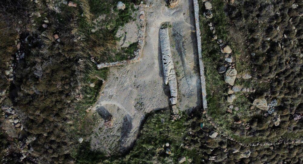 Árvore fossilizada no Parque Nacional da Floresta Petrificada na ilha de Lesbos, Grécia