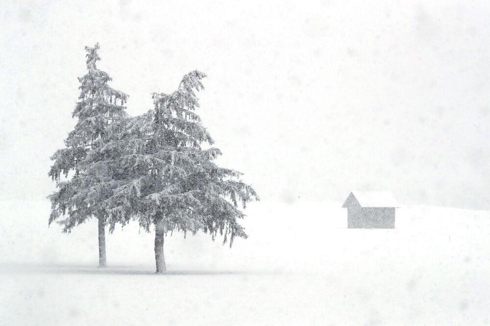 Neve cobre a paisagem na província italiana de língua alemã de Tirol do Sul, Itália, 23 de janeiro de 2021
