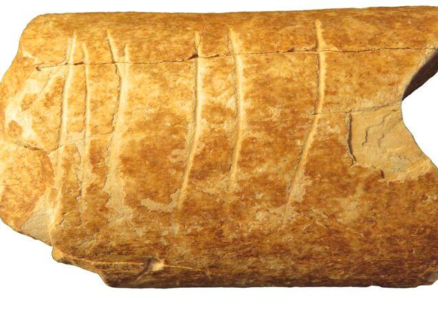 A imagem tridimensional foi usada para analisar o fragmento ósseo gravado, o que permitiu à equipe ter uma visão detalhada das gravuras e confirmar que foram feitas intencionalmente
