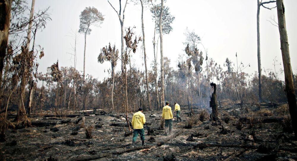 Brigada do IBAMA tentam controlar focos de incêndio em Apui, no Amazonas