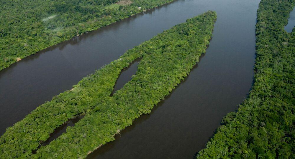 Vista do Parque Nacional do Jaú durante sobrevoo, em Barcelos, no estado do Amazonas (arquivo)