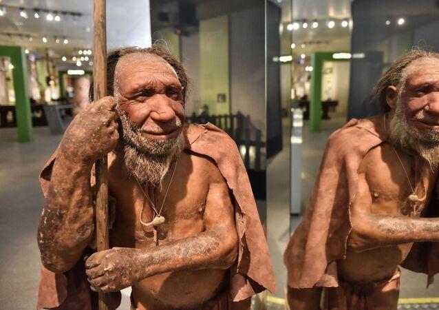 Reconstrução de neandertal que habitou Eurásia em um período entre 400 mil e 40 mil anos, exibida no Museu Neandertal em Mettmann, Alemanha