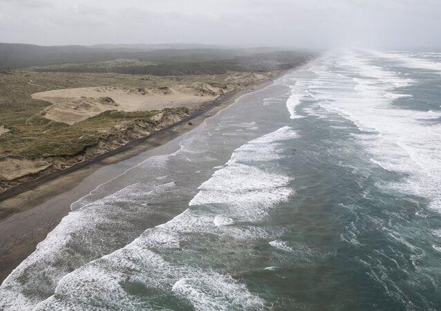 Praia de Muriwai, na costa oeste da região de Auckland, na Ilha do Norte da Nova Zelândia (arquivo)