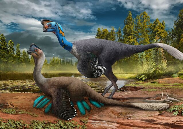 Representação artística do dinossauro oviraptor sentado sobre um ninho de ovos azul-esverdeados