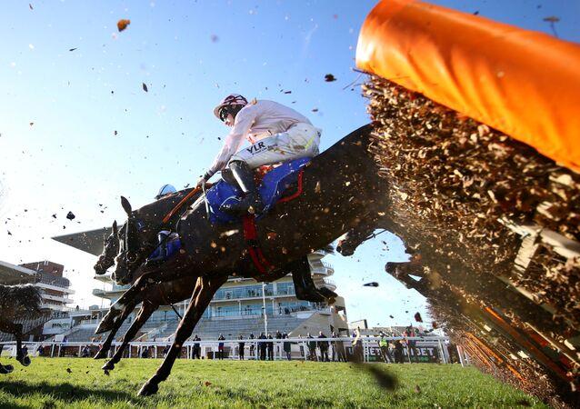 Corrida de cavalos no hipódromo de Cheltenham, Reino Unido