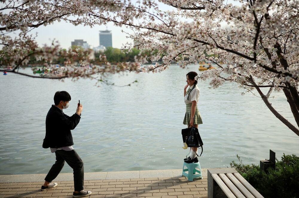 Pessoas tiram foto ao lado de uma árvore florida durante a temporada da flor de cerejeira no parque Yuyuantan, Pequim, China, 31 de março de 2021