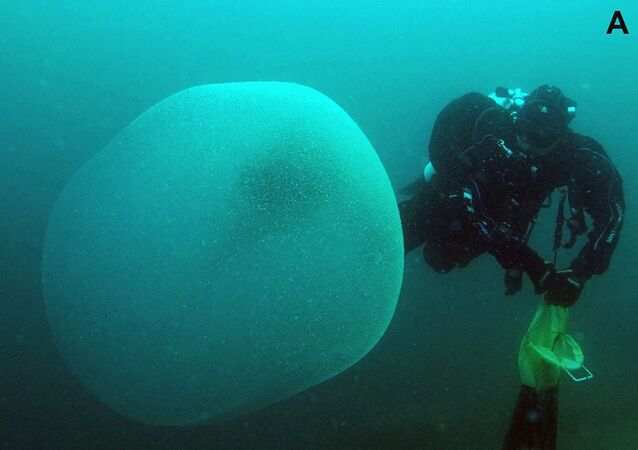 Misteriosa bolha opaca flutuando entre a superfície e fundo marinho