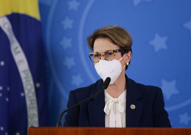 A ministra da Agricultura, Pecuária e Abastecimento, Tereza Cristina, durante coletiva de imprensa.