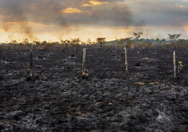 Área devastada na Floresta Amazônica próxima à cidade de Humaitá, no Amazonas.