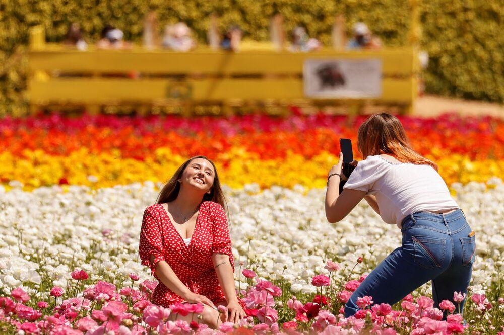 Moças tiram fotos em campo de flores em Carlsbad, Califórnia, EUA