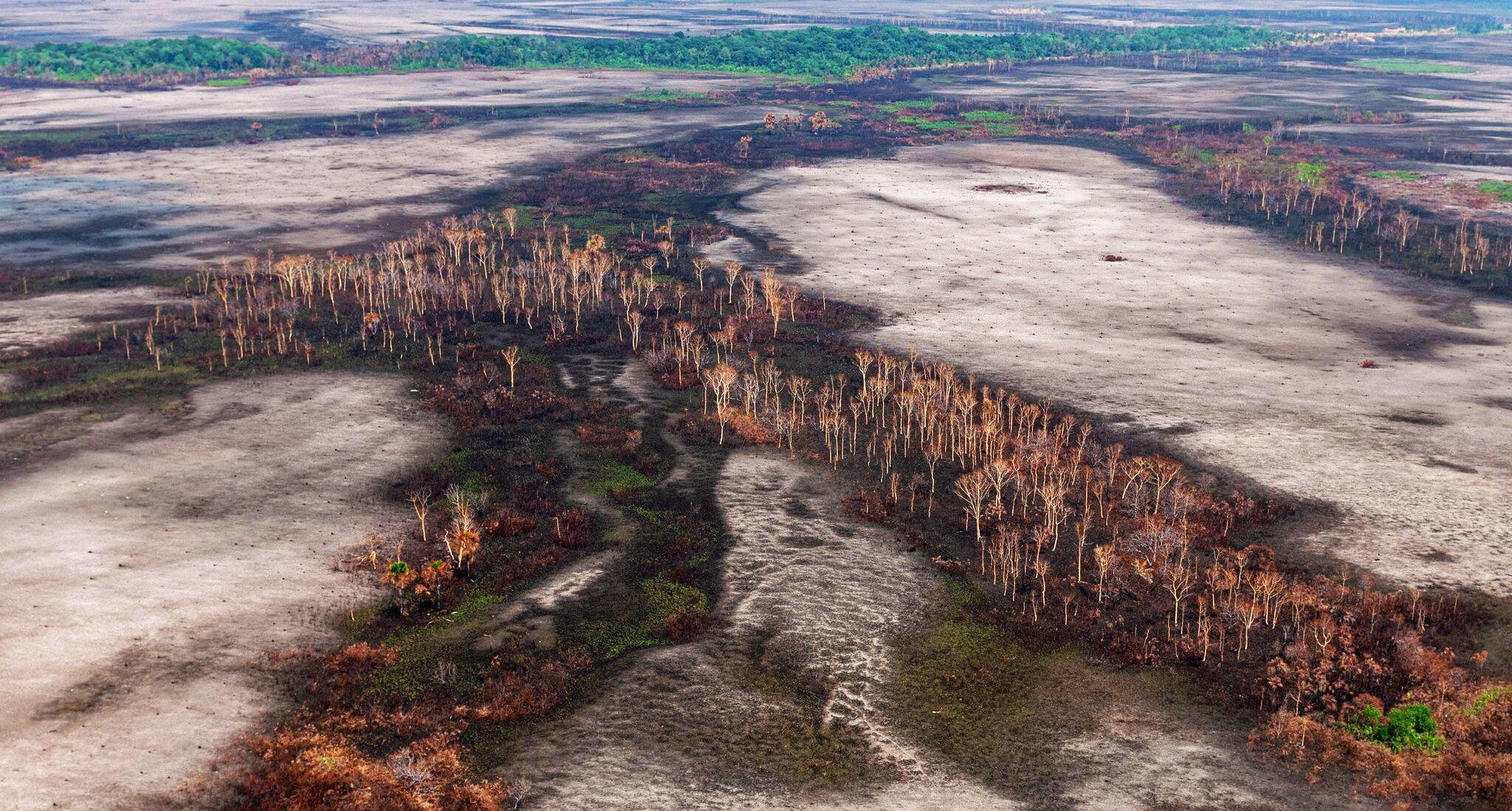 Imagem aérea mostra desmatamento na Floresta Amazônica, em 29 de agosto de 2019