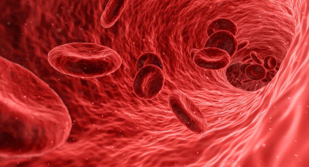 Imagem de células sanguíneas