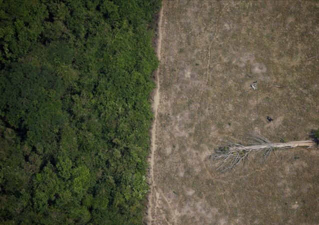 Área desmatada na Amazônia.