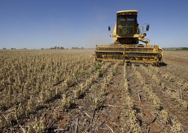 Um trabalhador em um trator colhe soja em Fátima do Sul, Brasil, terça-feira, 17 de março de 2009