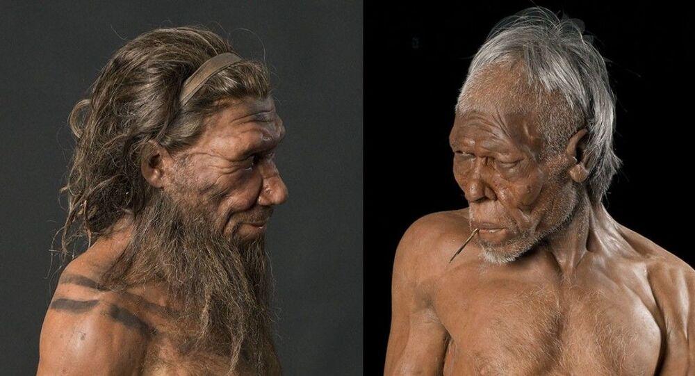 Reconstrução de neandertal e Homo sapiens pelos irmãos Kennis no Museu de História Natural de Londres
