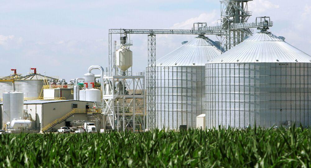 Em Windsor, no estado norte-americano Colorado, uma usina de etanol funciona ao lado de silos de milho, em 7 de julho de 2006
