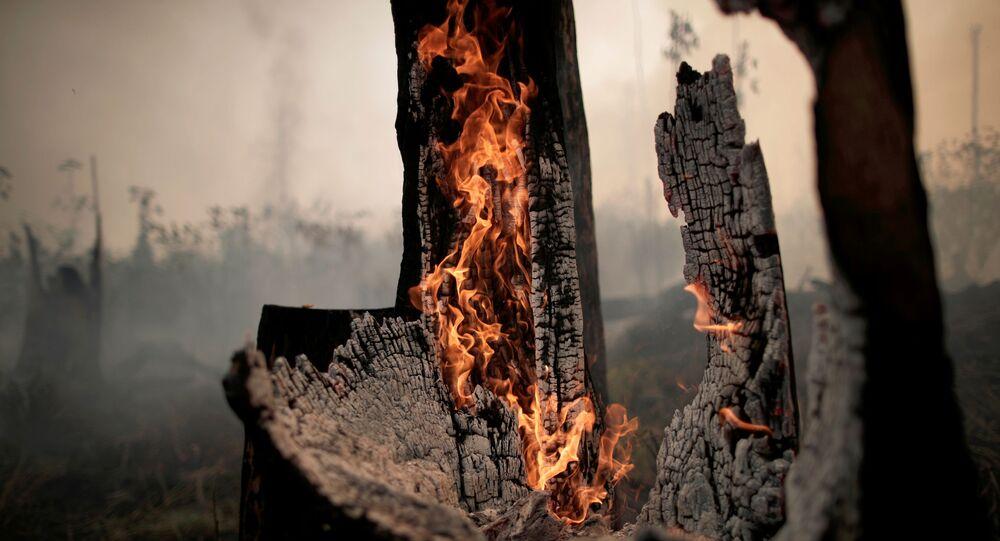 Imagem de área da Amazônia sendo desmatada, em Porto Velho, no Brasil, no dia 23 de agosto de 2019