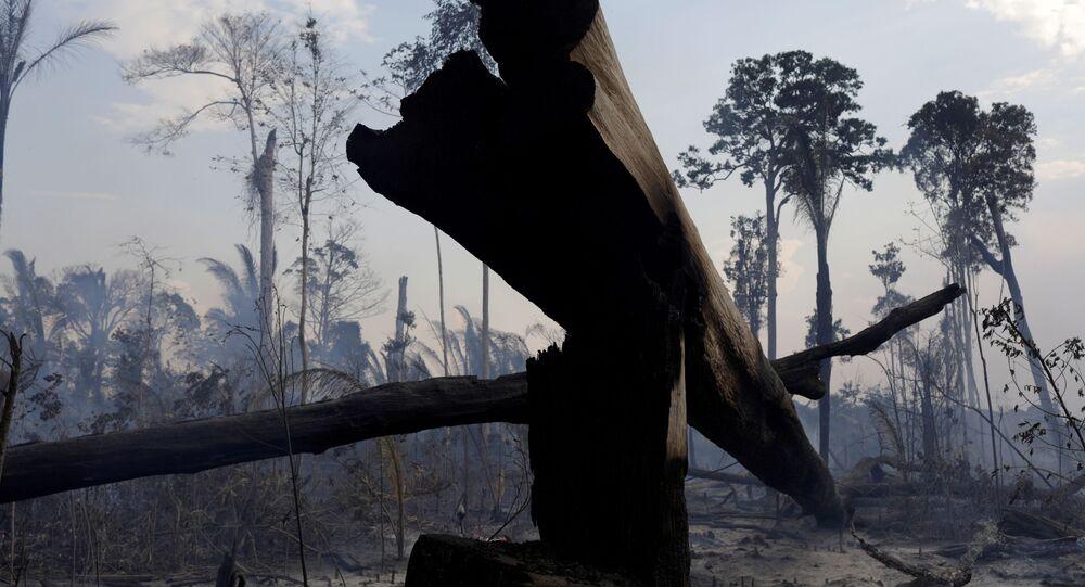Imagem mostra área desmatada da Floresta Amazônica, em Rio Pardo, em Rondônia, no Brasil, no dia 16 de setembro de 2019