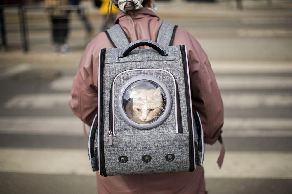 Mulher leva um gato em sua mochila, Oslo, Noruega, 25 de abril de 2021