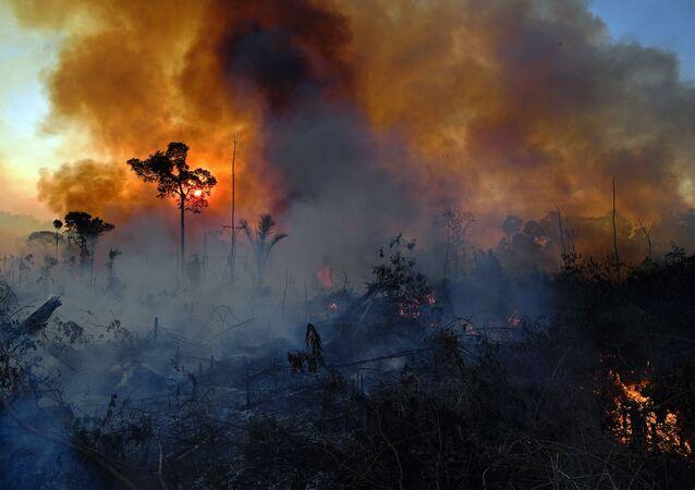 Incêndio ilegal é fotografado em reserva da Floresta Amazônica, ao sul da cidade de Novo Progresso, no estado do Pará, no Brasil, em 15 de agosto de 2020