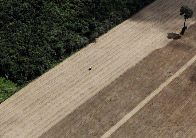 Próximo da cidade de Santarém, Brasil, um trator trabalha em uma plantação de trigo na Amazônia, em 20 de abril de 2013