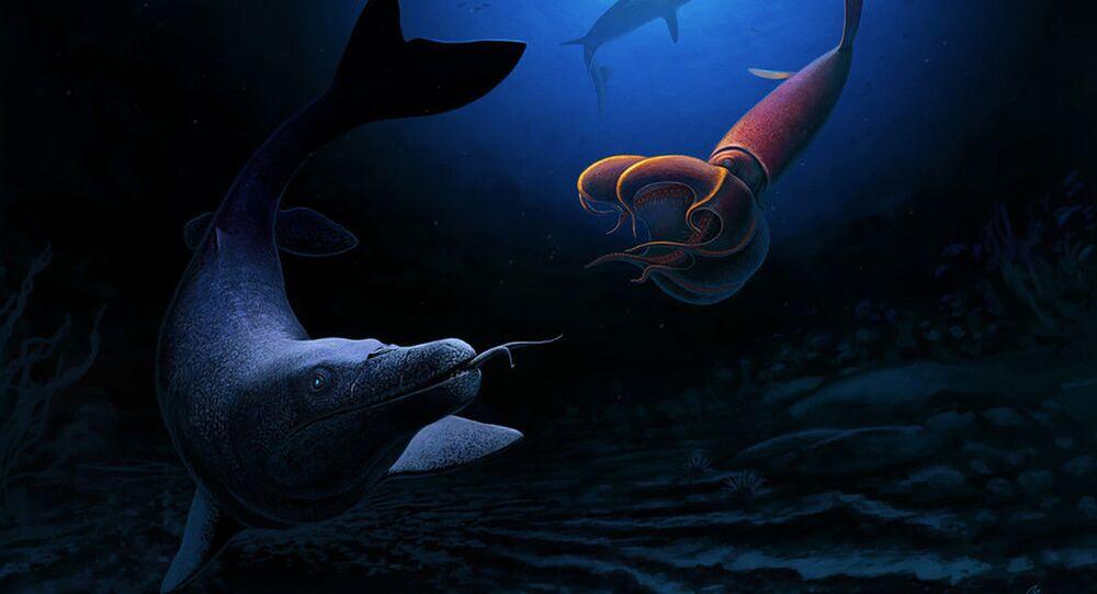 Fósseis de uma espécie de lagarto marinho gigante, que caçava como serpentes, são encontrados no Marrocos