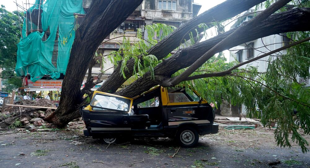 Veículo danificado debaixo de uma árvore caída, Mumbai, Índia, 18 de maio de 2021