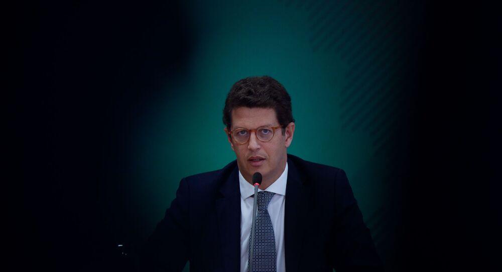 O ministro do Meio Ambiente, Ricardo Salles, em Brasília