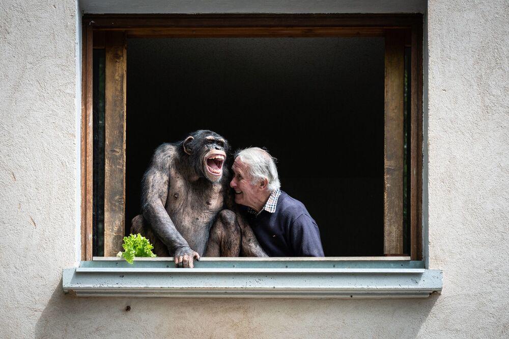 Dono de jardim zoológico, Pierre Thivillon, rindo ao lado de chimpanzé, França, 17 de maio de 2021