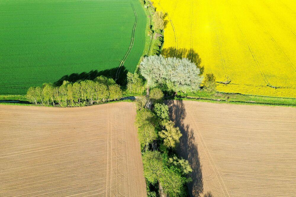 Vista aérea de campos de colza, trigo e beterraba açucareira na França, 18 de maio de 2021