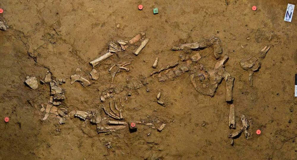 Tumba de uma mulher da Idade do Bronze é encontrada na Alemanha