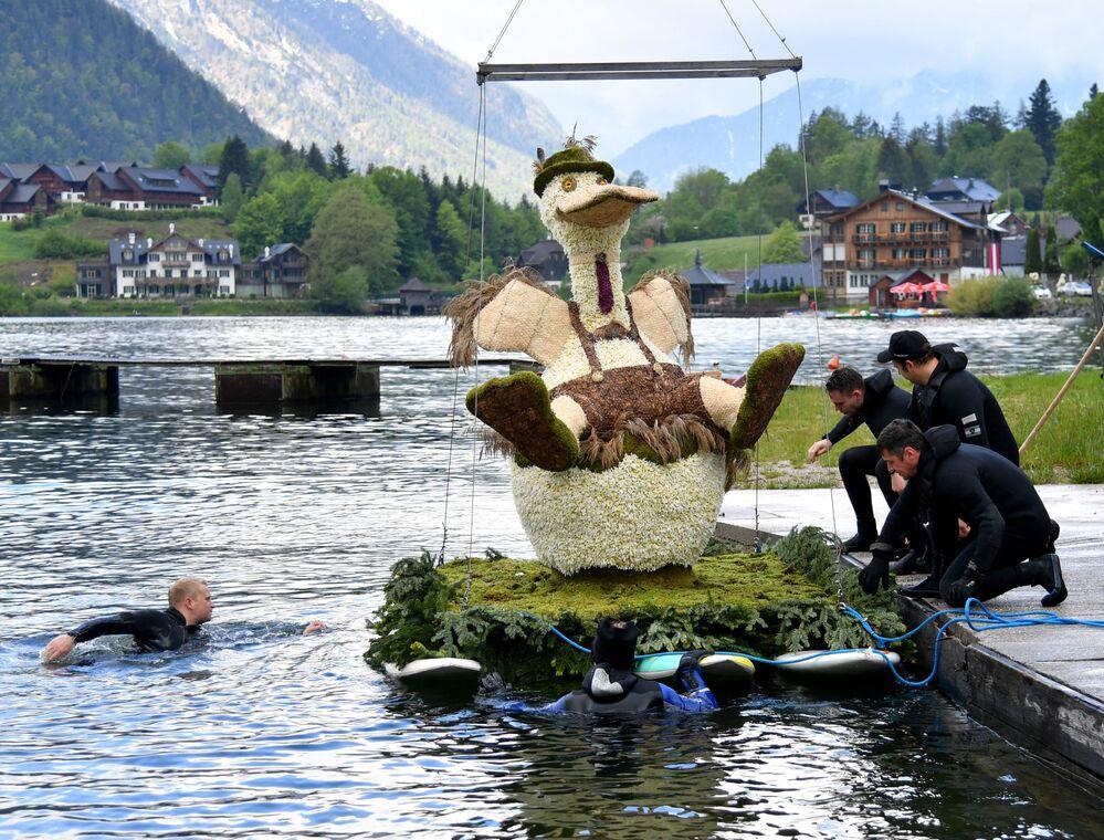 Preparativos para o desfile do 61º festival de narcisos no lago Grundlsee, Áustria