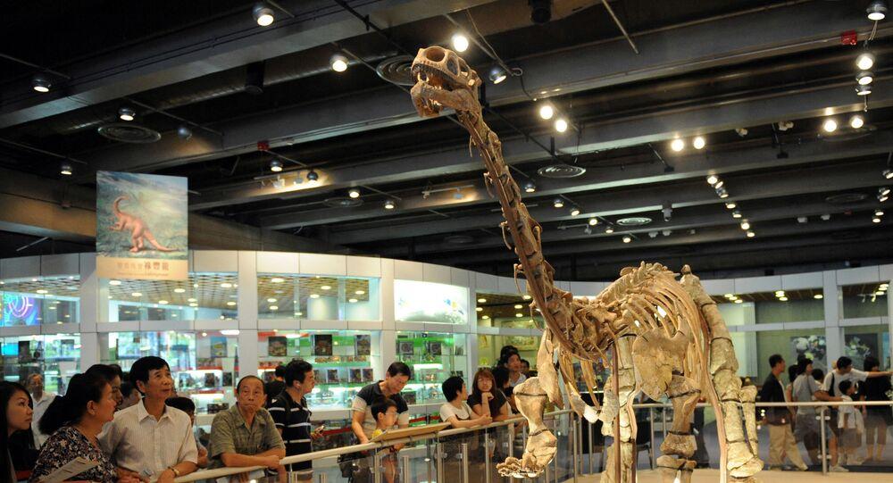 Fóssil de um dinossauro Lufengosaurus