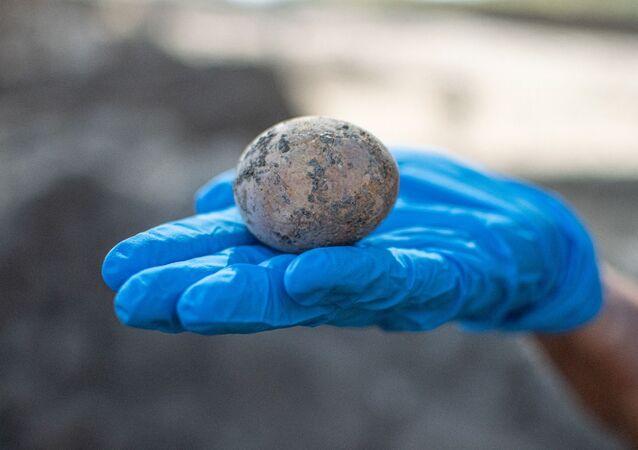 Ovo de galinha de 1.000 anos encontrado em Israel