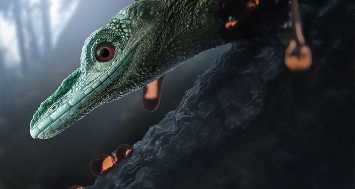 Representação artística do lagarto Oculudentavis naga