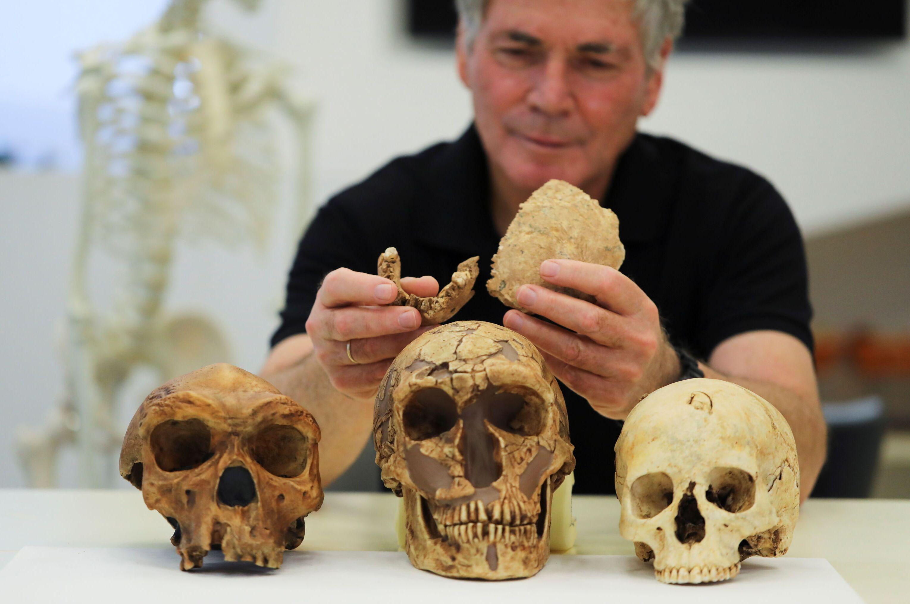 Professor Israel Hershkovitz, da Universidade de Tel Aviv, com os ossos fossilizados encontrados em Nesher Ramla