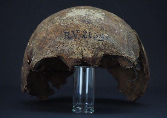 Crânio de caçador-coletor da Idade da Pedra de mais de cinco mil anos