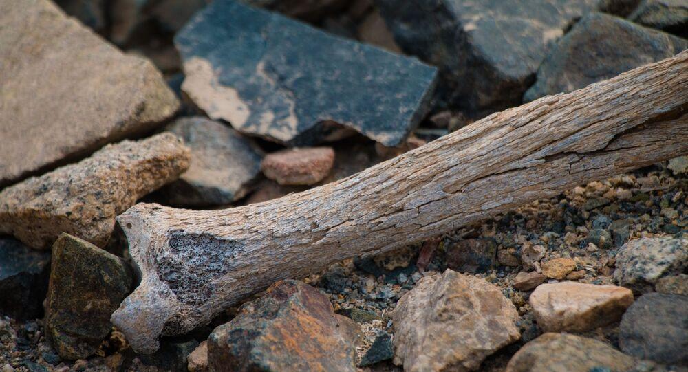 Túmulos (imagem referencial)