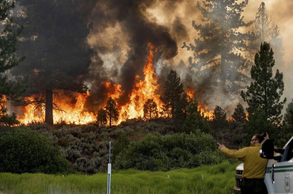 Bombeiro monitora incêndio que alastra na Floresta Nacional de Plumas, Califórnia, EUA, 9 de julho de 2021