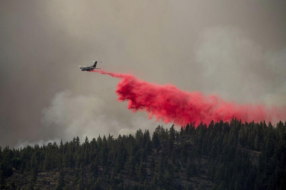 Avião de combate a incêndios deixa cair substâncias retardadoras para impedir que o incêndio chegue ao condado de Plumas, norte da Califórnia, EUA, 9 de julho de 2021